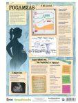 Fogamzás / fogamzásgátlás  FIXI-tanulói munkalap