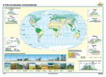 A Föld természetes növénytakarója iskolai falitérkép - egyoldalas - választható méret, nyelv - fóliás, alul-felül faléces