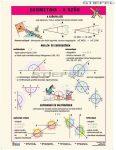 Geometria - a szög - FIXI-tanulói munkalap