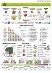 Orosz nyelv alapismeretek 1. - FIXI-tanulói munkalap